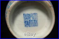 Antique Chinese Hand Painting Fruits Porcelain Bottle Vase Qianlong