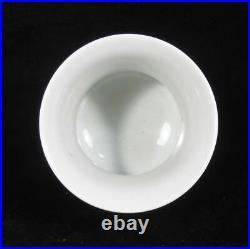 Chinese Antique Hand Painting DouCai Porcelain Vase QianLong Marks