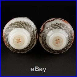 Chinese Emperor Qianlong Peking Glass Pair of Hand-Painted Dragon Vases