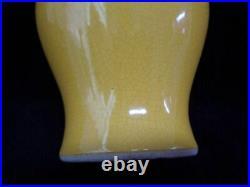 Rare Large Old Chinese Yellow Glaze Pocelain Vase Marked QianLong Period